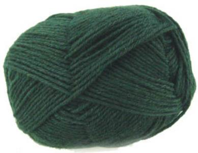 Regia 6 ply sock yarn 327 Fir
